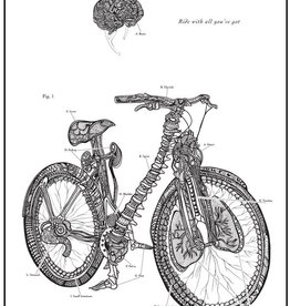 Artery Ink Bicycle Anatomy Print
