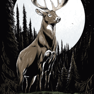 Volume One (Mark Lone) The Woods Are Calling Print (20x30)