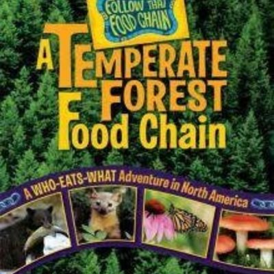 Rebecca Wojahn A Temperate Forest Food Chain