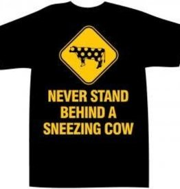 Michael Perry Never Stand Behind a Sneezing Cow Tee
