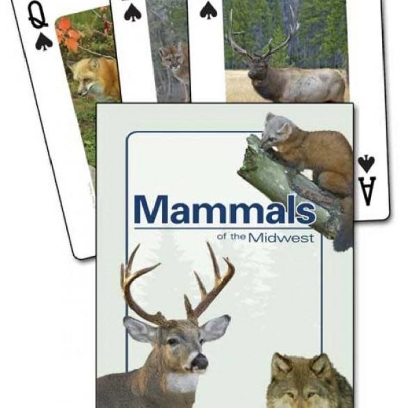 Stan Tekiela Playing Cards - Mammals of the Midwest