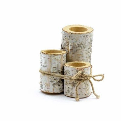 Winter Woods Real Birch Decor Holder (Set of Three)