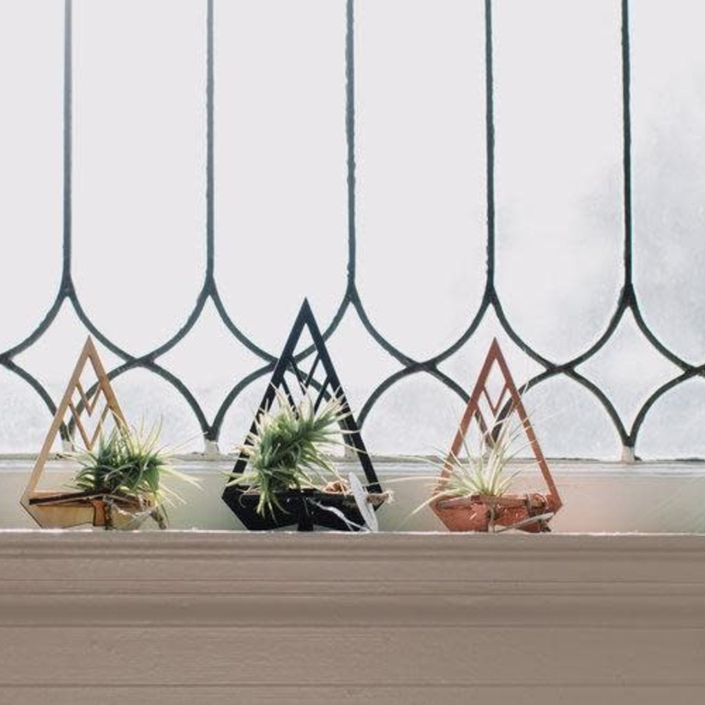 Paper Pleasers Air Plant Holder - Wood Triangle