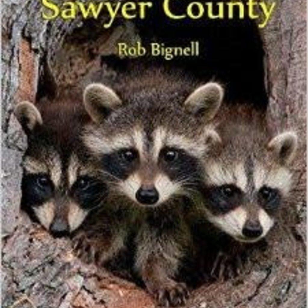 Rob Bignell Hittin' the Trail: Wisconsin Day Hiking Trails of Sawyer County