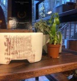 Tandem Ceramics White Ceramic Planter - Woodgrain