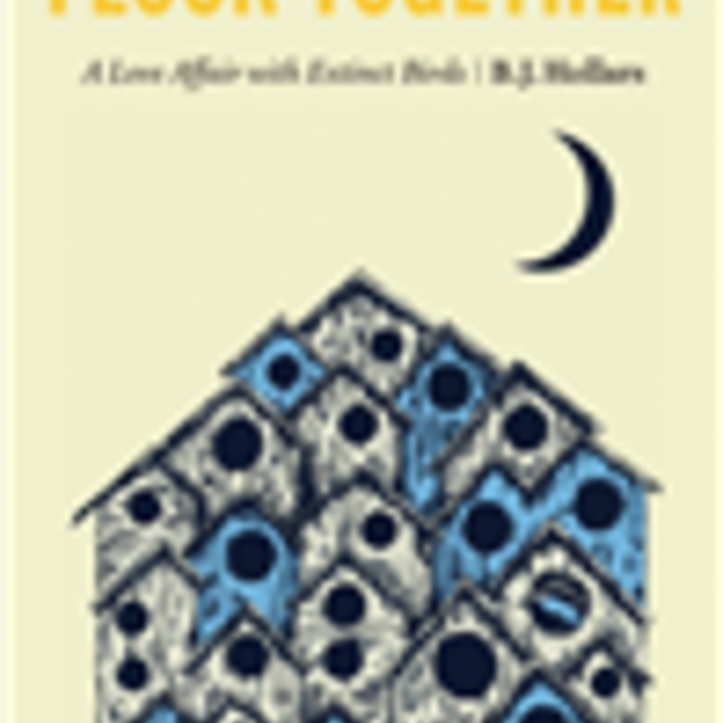 BJ Hollars Flock Together (Hardcover) - A Love Affair with Extinct Birds