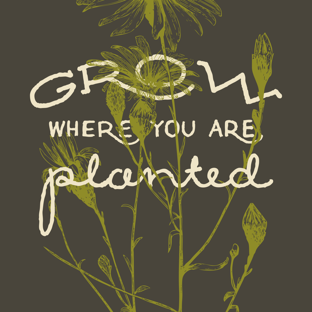 Volume One Grow Where You Are Planted Print