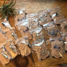 heartSTORMS Studios Wisconsin Nature Encased Earrings (#1)