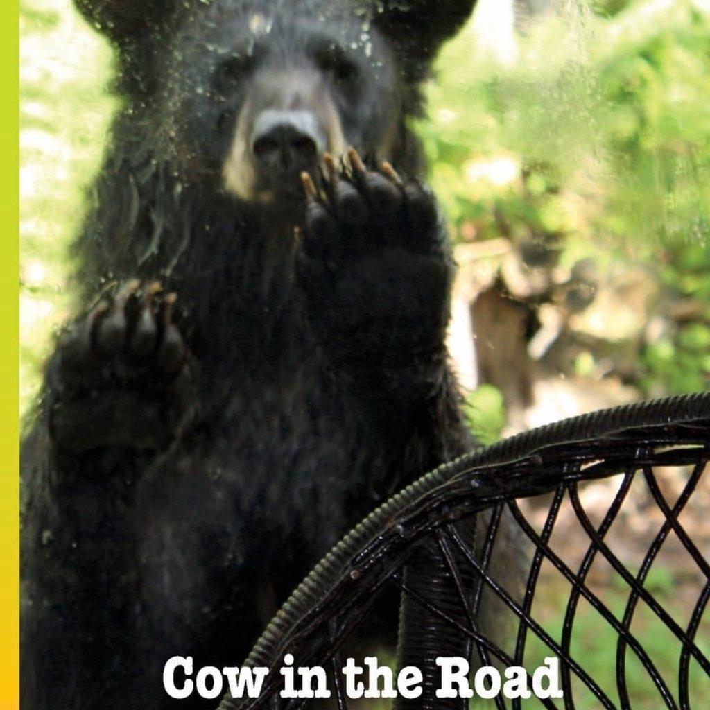 Roslyn A. Nelson Cow in the Road Bear in the House