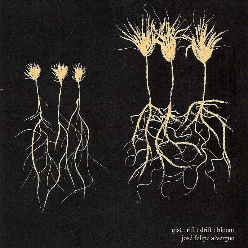 Jose Alvergue Gist:Rift:Drift:Bloom