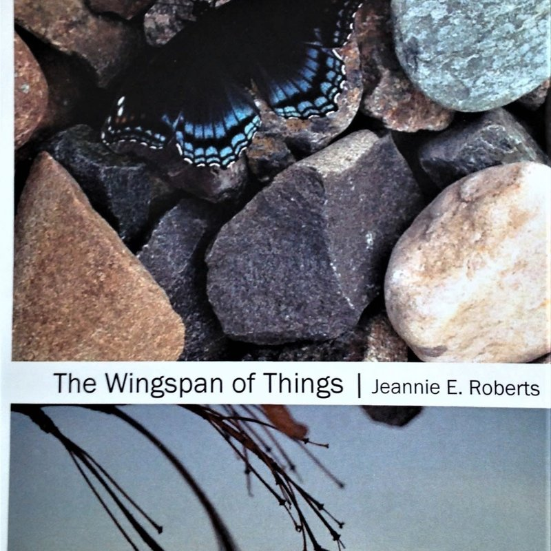 Jeannie E Roberts The Wingspan of Things