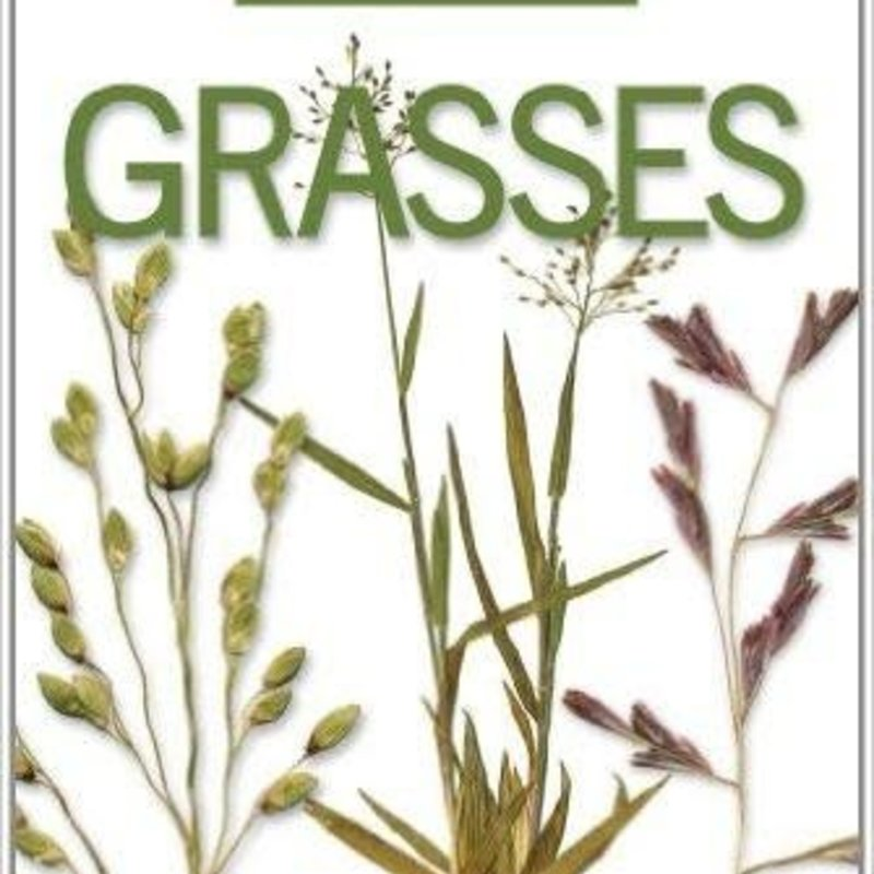 Emmet J. Judziewicz Field Guide to Wisconsin Grasses