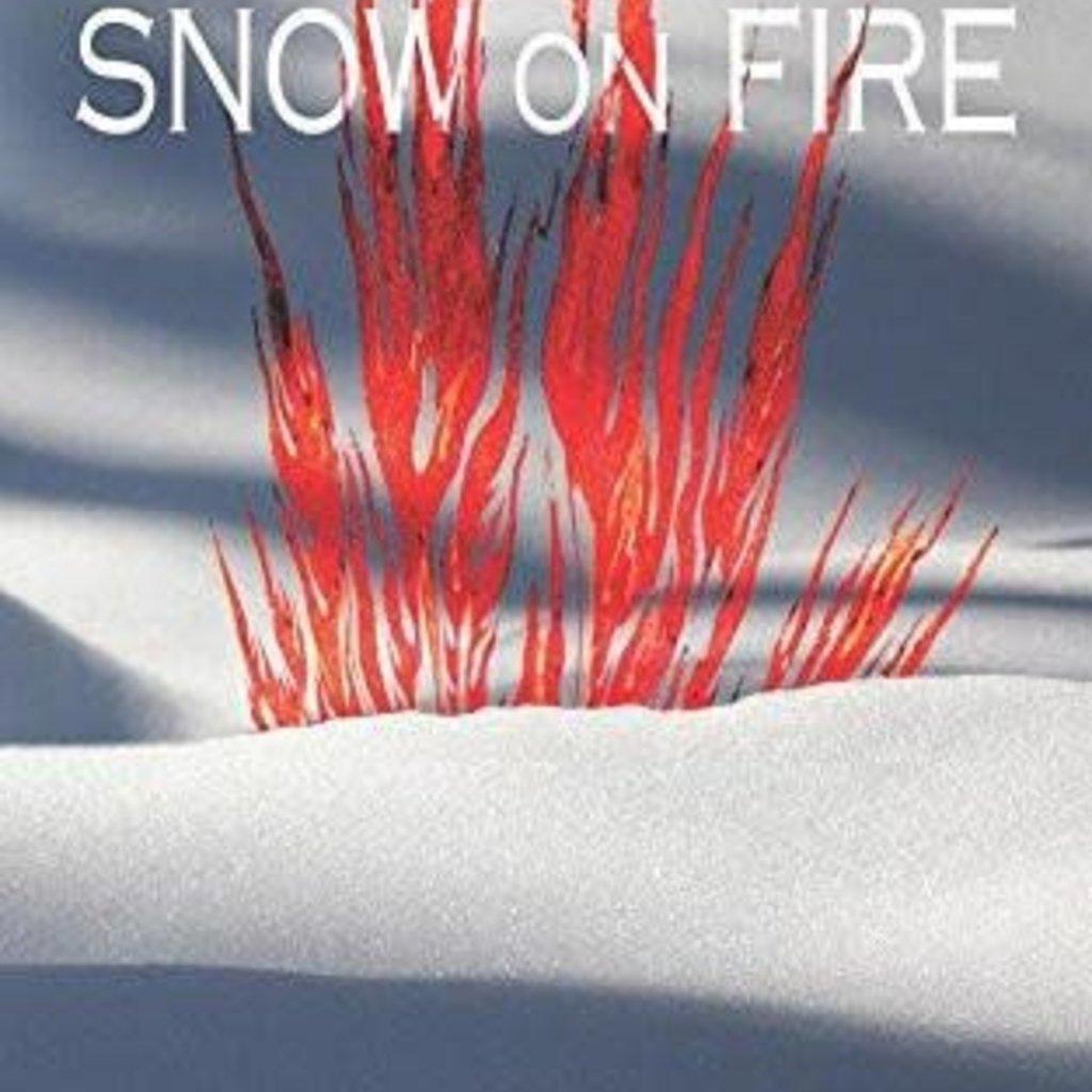 Roslyn A. Nelson Snow on Fire