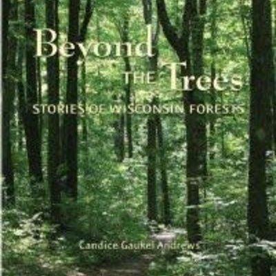 Candice Gaukel Andrews Beyond the Trees