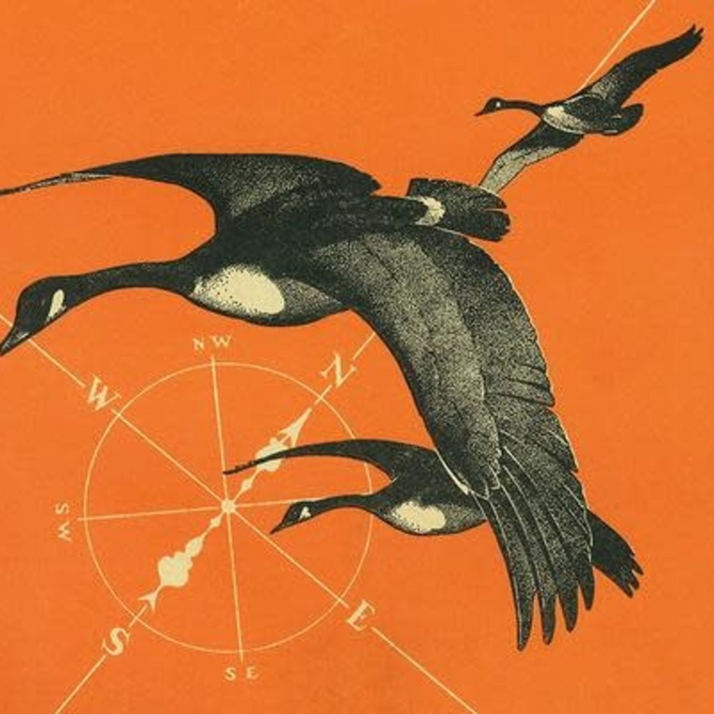 Volume One Geese w/ Compass Print (12x18)