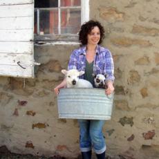 Wool n' Feather Farm Dryer Ball (Individual)