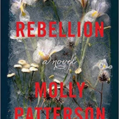 Rebellion (Hardcover)