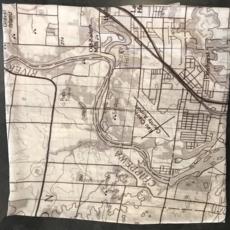 Volume One Eau Claire Map Scarf - Vintage