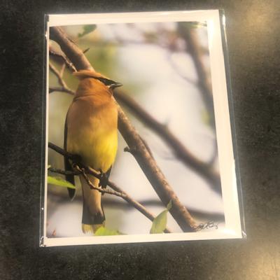 Lloyd Fleig Cedar Waxing Greeting Card