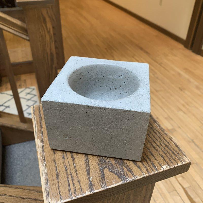 Concrete Pig Concrete Miscellaneous Holder - Assorted
