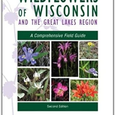 Merel R. Black Wildflowers of Wisconsin - Great Lakes Field Guide