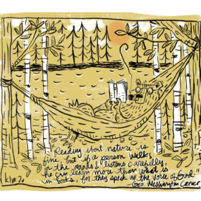 Bear Hammock Print (11x14)