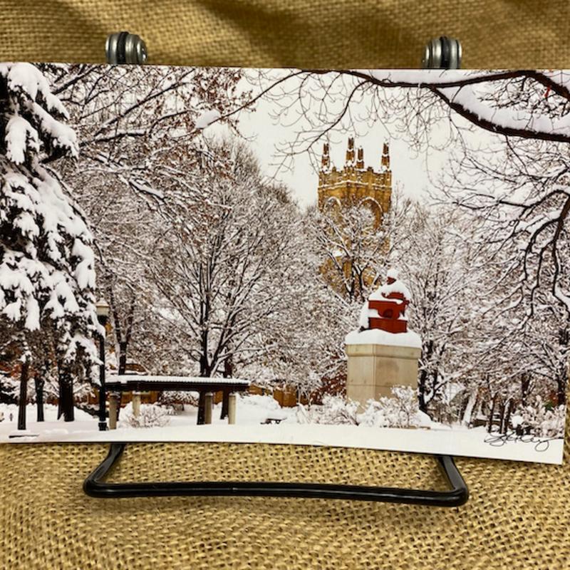 Lloyd Fleig Winter in the Park - Postcard