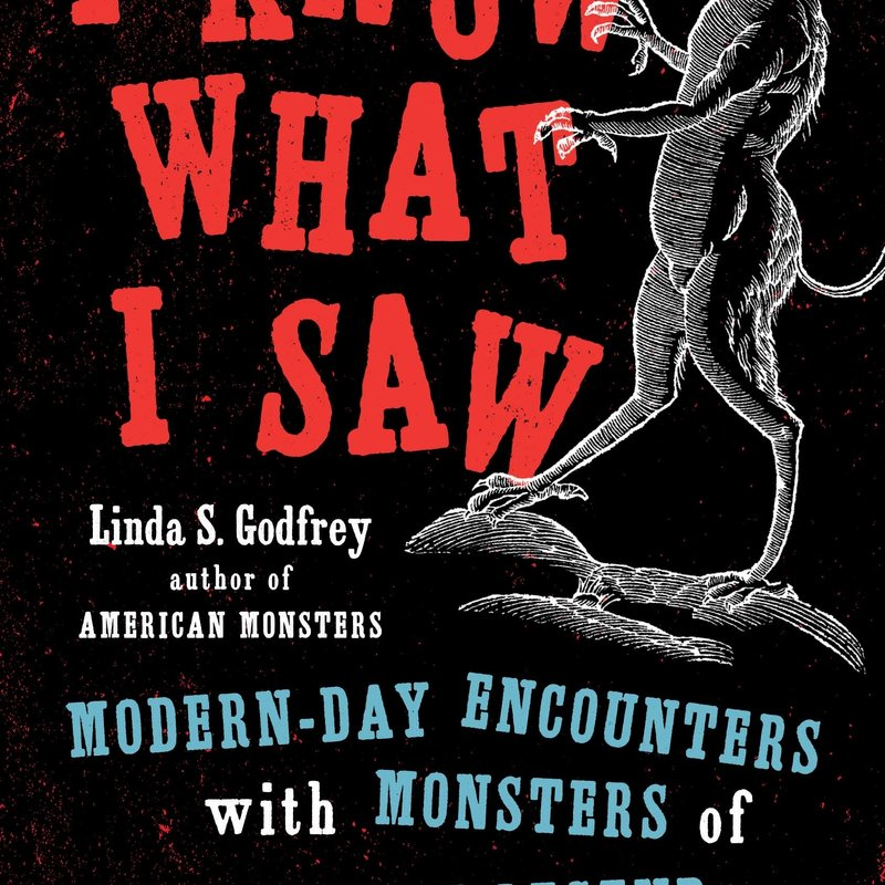 I Know What I Saw: Modern Day Encounters With Monsters ...
