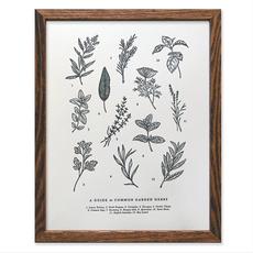 Guide to Garden Herbs Chart (11x14)