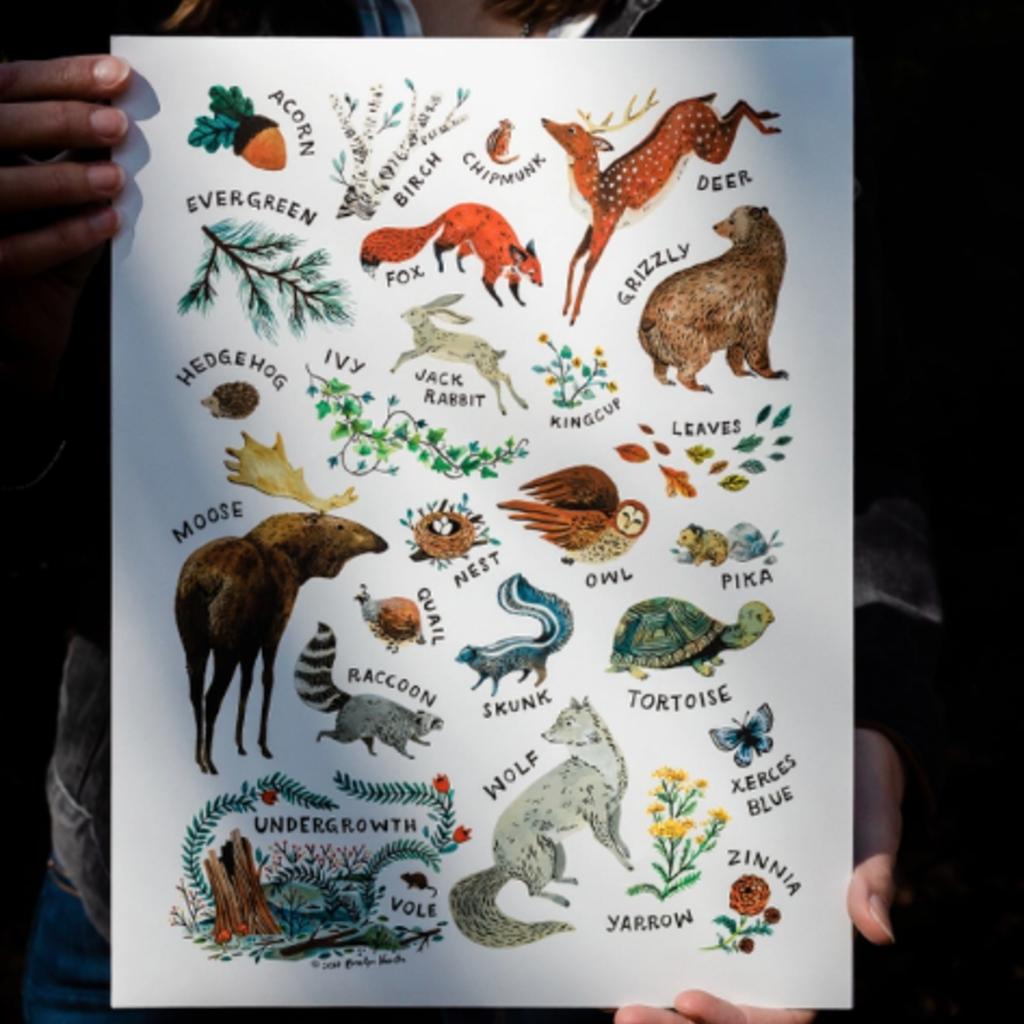 Woodland Alphabet Art Print: 8x10