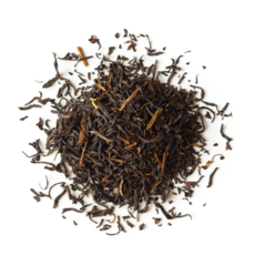 Letterbox Tea - Anthology (Organic Black Tea)