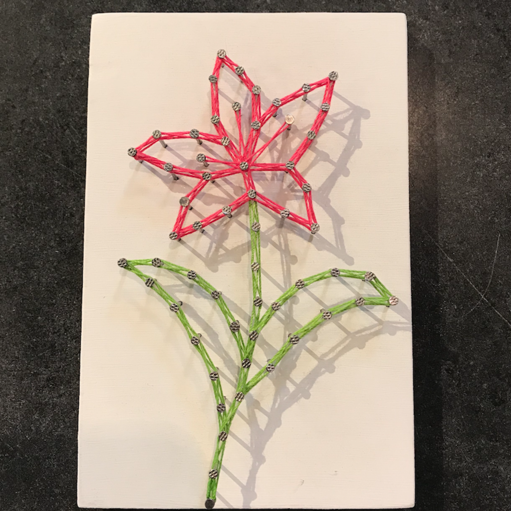Strung on Nails String Art - 4x6 Flowers (Assorted)