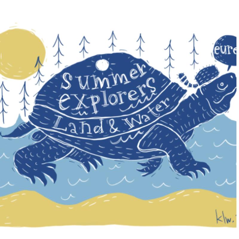 Summer Explorers: Turtle (11x14)
