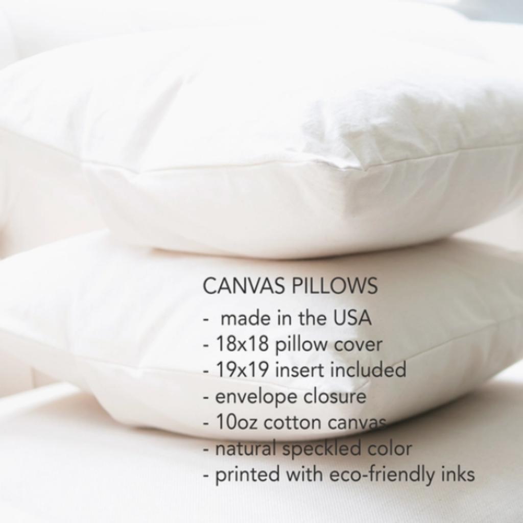 Canvas Pillow - Wisconsin Motto