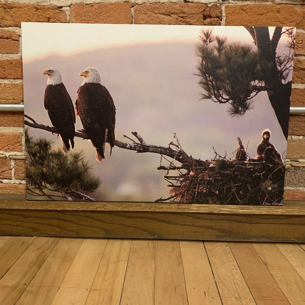 Stretched Canvas - Putnam Park Eagles