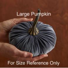 Velvet Pumpkin - Large (Assorted)