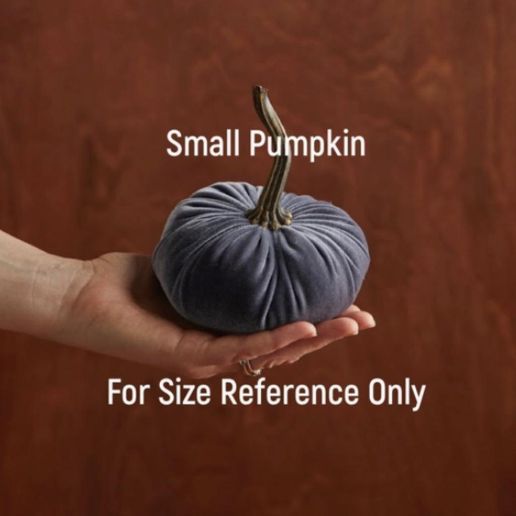Velvet Pumpkin - Small (Assorted)