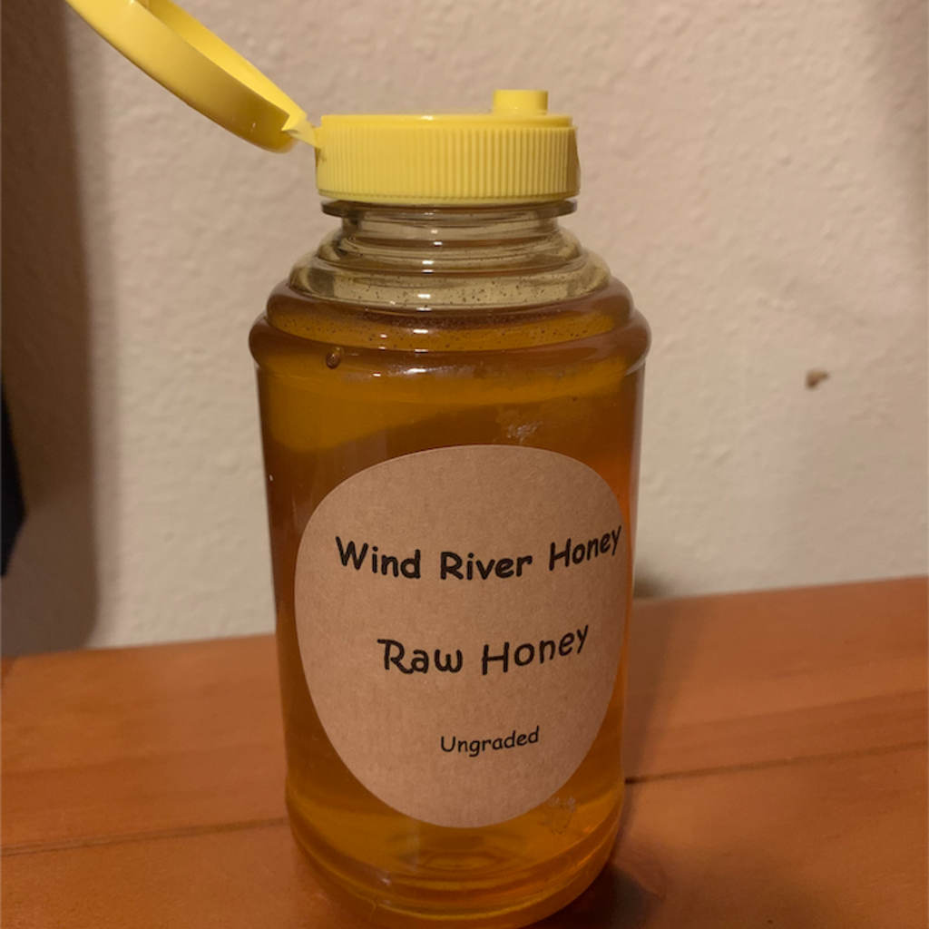 Raw Honey - 1 lb Squeeze Jar