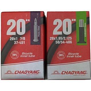 """Chaoyang TUBE 20"""""""
