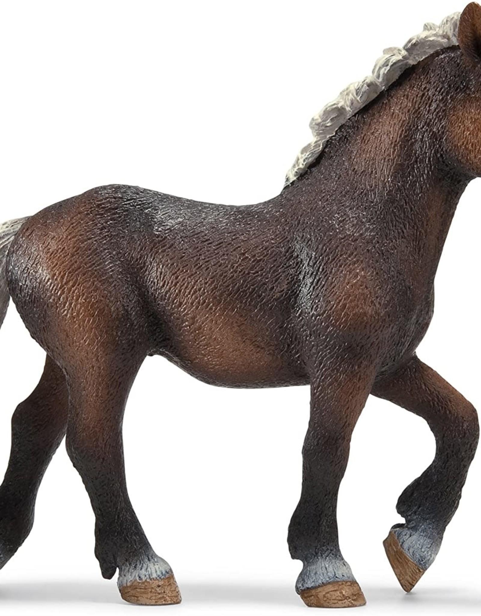Schleich Black Forest Foal 13899