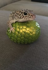 Monkey Mountain Dragon Egg Craft