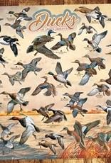 Cobble Hill Ducks of North America 1000pc