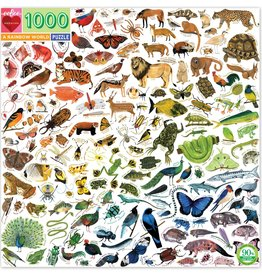 eeBoo A RAINBOW WORLD 1000 PC