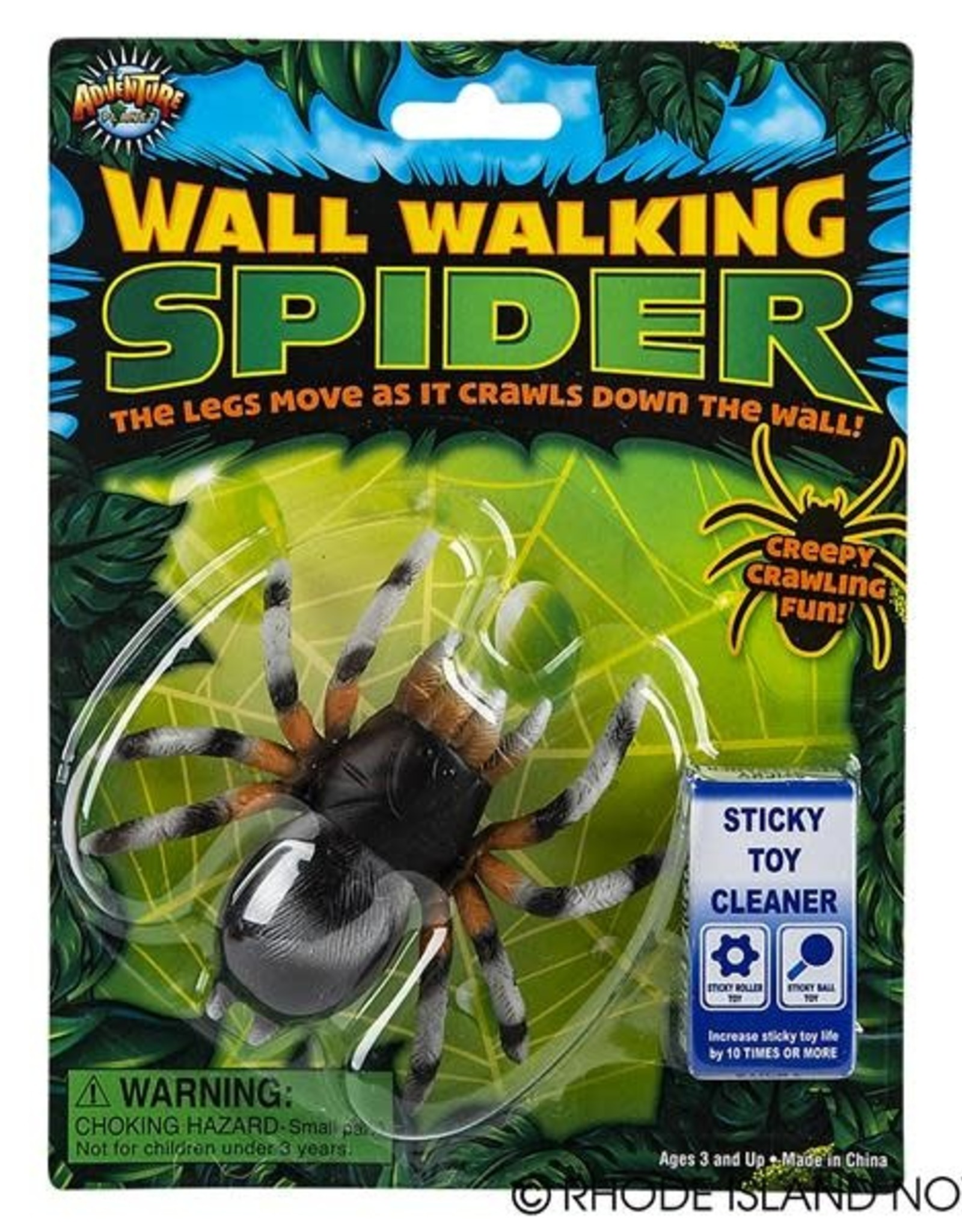 Wall walking spider