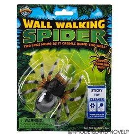 Wall walking spider
