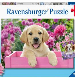 Ravensburger Me and My Pal 2 x 24Pc