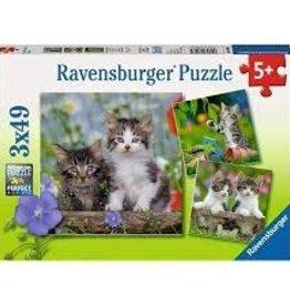 Ravensburger Cuddly Kittens (3 x 49 pc)