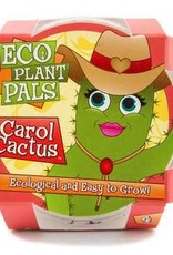 Eco Seed sprouts-Caring Carol