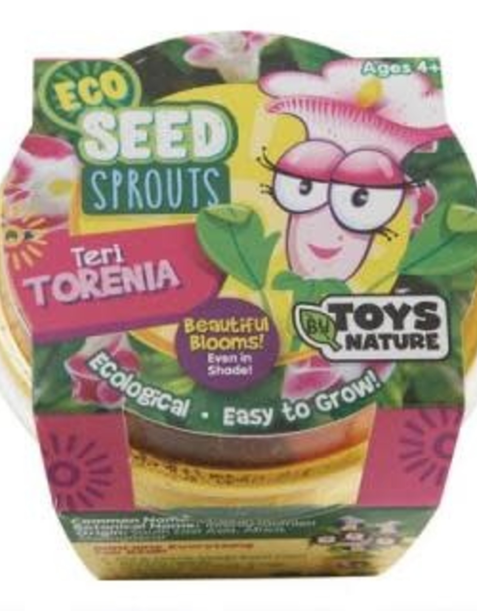 Eco Seed Sprouts-Teri Torenia