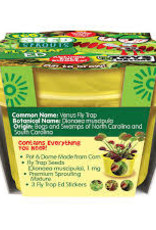 Eco Seed Sprouts-Fly Trap Ed